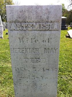 Artemisia <I>White</I> May
