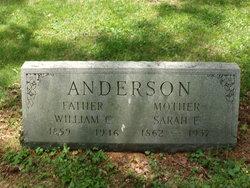 Sarah E. Anderson