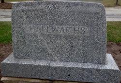 Fred W Hallwachs
