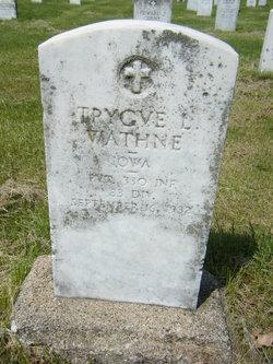 Trygve L Wathne