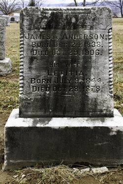 James Alexander Anderson