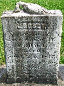 Judge Brown