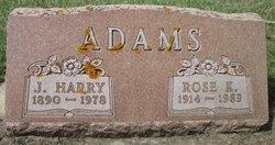 Rose K Adams
