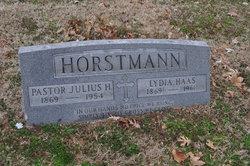 Julius Herman Horstmann