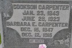 Barbara Elizabeth <I>Hannahs</I> Carpenter