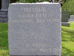 Joseph Wallace Axtell