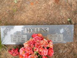 Pecolia Bit Hollins