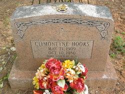 Climontyne Hooks
