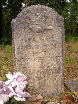 Duck Todd