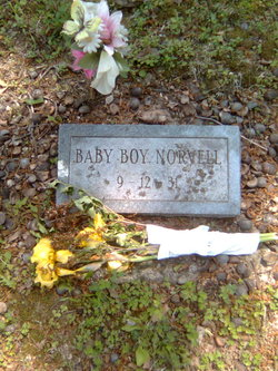 Baby Boy Norvell