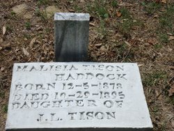 Malisia Alice <I>Tison</I> Haddock