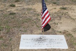 William Henry Miley, Jr