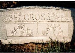 Agnes B <I>Rohr</I> Gross