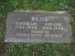 Joan Lois Major