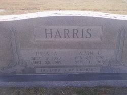 """Mollie Letitia """"Tisha"""" <I>Armes</I> Harris"""