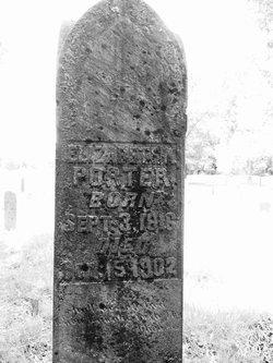 Elizabeth Ann <I>Howey</I> Porter