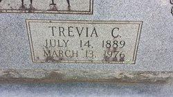 Trevia C <I>Silver</I> Brown