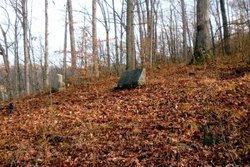Delong Cemetery #2