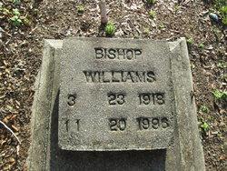 Bishop Williams