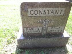 "Rev Mary Cordelia ""Delia"" <I>Caudill</I> Constant"