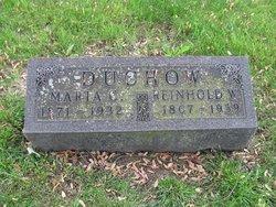 Reinhold W. Duchow