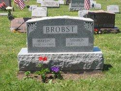 Martin L Brobst