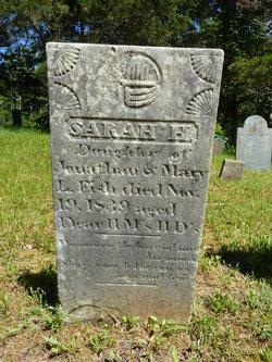 Sarah H Fish