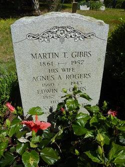 Martin T Gibbs