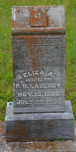 Eliza Ann <I>Robinson</I> Lazenby