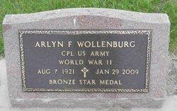 Arlyn F. Wollenburg