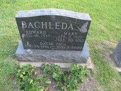 David Paul Bachleda