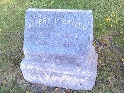 Albert L Bayard