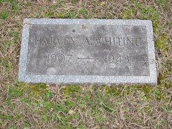 Harvey Augustus Whiting