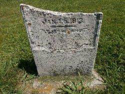 Elizabeth J. <I>Taylor</I> Sherman