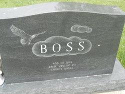 Christine M Boss