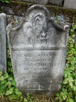 Mary Danielse <I>McKinney</I> Adams