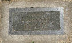 John L Dodendorf