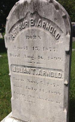 Arthur B Arnold