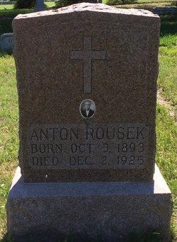 Anton Rousek