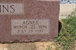 Mary Agnis <I>Jones</I> Scroggins