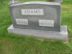 Laura F Adams