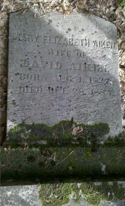 Mary Elizabeth <I>Adams</I> Aiken