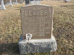 Elmer Wilson Beaver