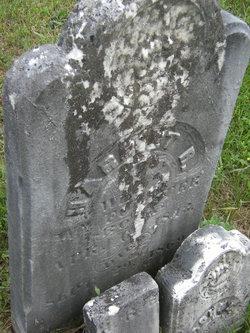 Harriet R. Forster