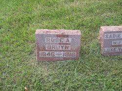 Rose A. <I>Davis</I> Bruyn