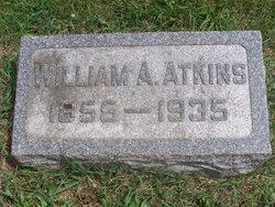 Dr William A. Atkins