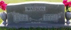 Evelyn V. Watson
