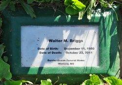 Walter M Briggs, Jr