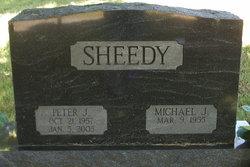Peter J Sheedy