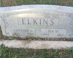 Chester Arthur Elkins